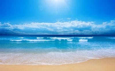 Playa y aguamala ¡lo que debes saber!